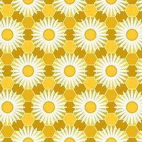 02202557 : honey flower