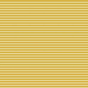 Gold Pinstripe