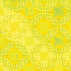 patchwork scallops citrus squeeze