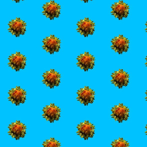 Adeno-Associated Virus on blue