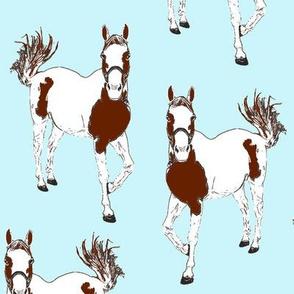 horses blue