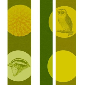 owl nature green stripes