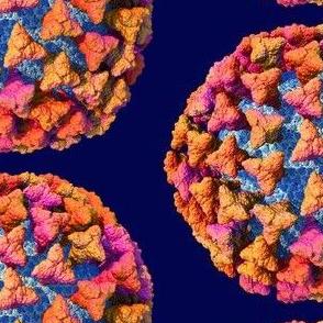 Coronavirus Scale Model Gold Purple