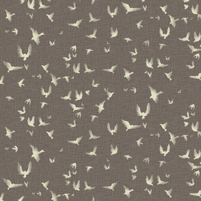 taupe birds