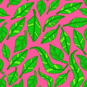 Green Leaves on Pink