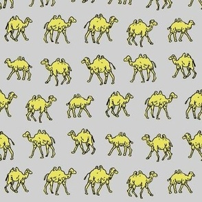Meandering Camels   Grey