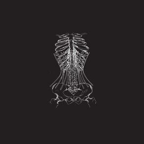 Corset Bones Black