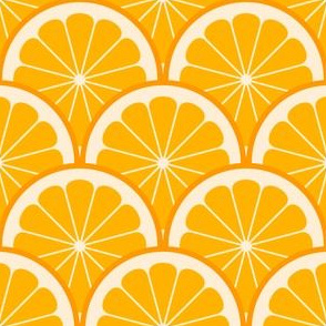 02243962 : citrus scale 1x X : orange