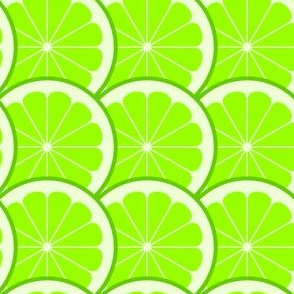 02243963 : citrus scale 1x : lime
