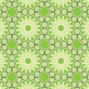 Rock Daisies - Bamboo Green