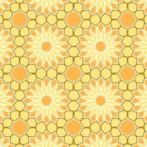 Rock Daisies - Sunshine Yellow