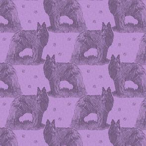Belgian sheepdog standing stamp - purple