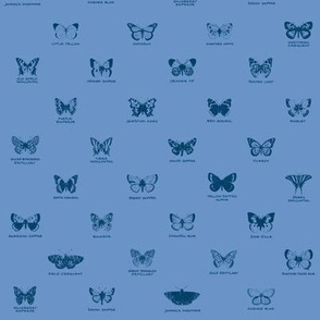 butterfly alphabet - blue twilight