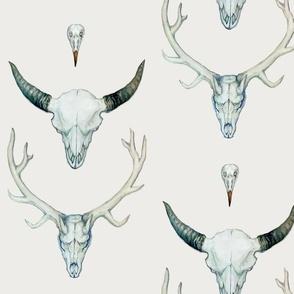 Animal Skulls Accent Pillow Fabric