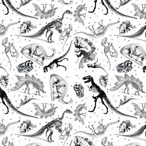 Black and White Dinosaurs and Stars