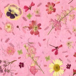 Pressed flowers on pink