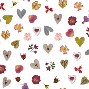 Botanical Hearts