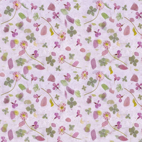 Flower Lavender Meadow
