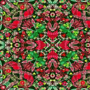 Poinsettia kaleidoscope