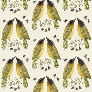 yellowthroats natural