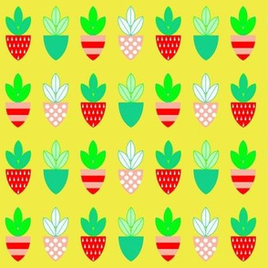 Strawberry Shields - Yellow Background