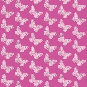 Raspberry Butterflies