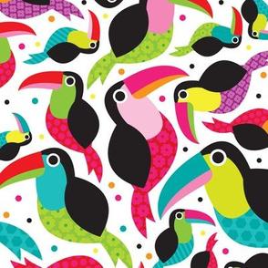 Tropical summer kids brazil tucan illustration birds design