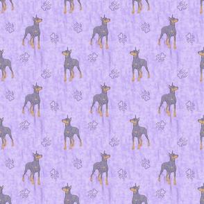 Posing Dobermans - purple