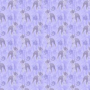 Posing Boston Terriers - purple