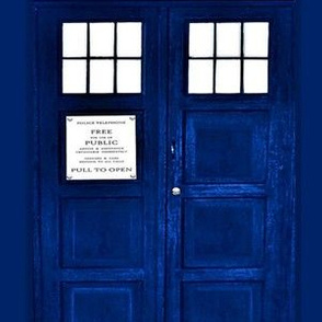 Blue Police Box Doors