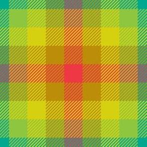 02284756 : tartan : spoonflower0063