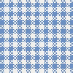 gingham_in_blue