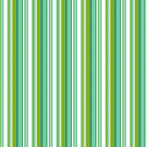 beach stripe 6