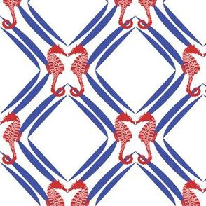 Nautical Seahorse Geometry