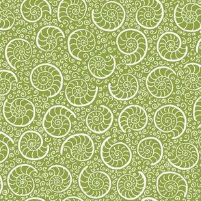 ammonites - moss green