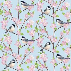 Chickadees and Apple Blossom