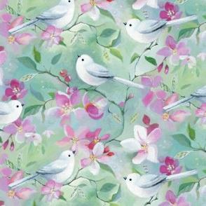 Snowbirds and blossom