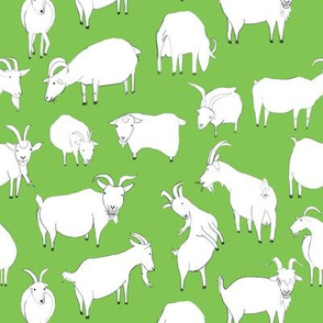 Green Goats Playing