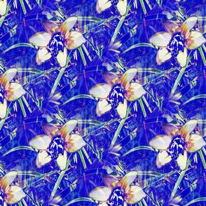 Blue Autumn Crocus 10x9