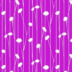 Pom flower stems purple