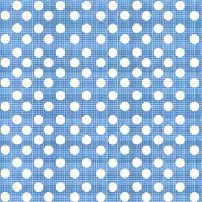 chambray dots-denim