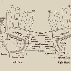 Vintage Hand Reflexology