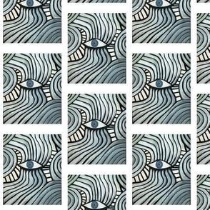 Eye of a Zebra- HD