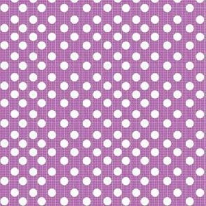 chambray dots- Purple