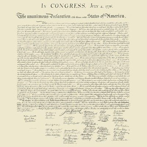 """8x8"""" (swatch size) Declaration of Independence (mini)"""