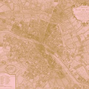 Plan de Paris ~ Paris Map ~ Pink and Gold