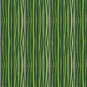 Wildwood Stripe