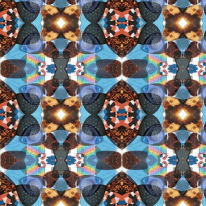 Guitar pic's Kaleidoscope