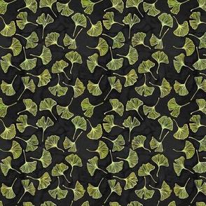 Ginkgo Leaves on Black