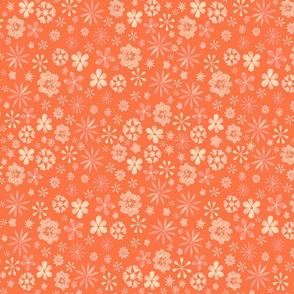 Calico Orange Citrus